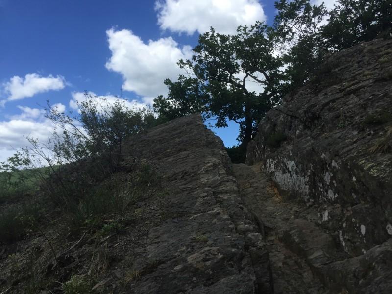 Alpine Grate an der Ahr - Frühsommer