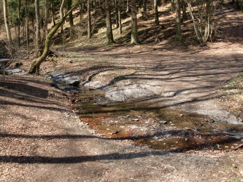 Traumpfad Bergheidenweg