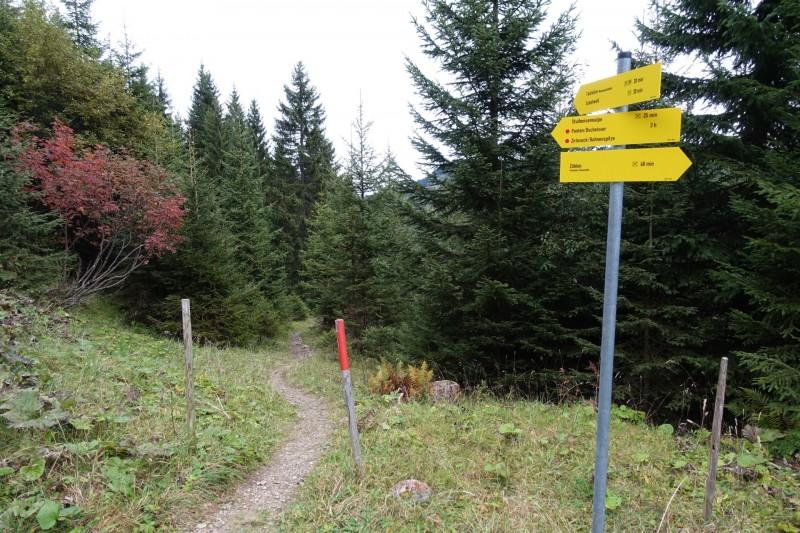 Bergstation Wannjochlift - Bschießer - Ponten - Zirleseck - Rohnenspitze - Talstation Wannenjochlift