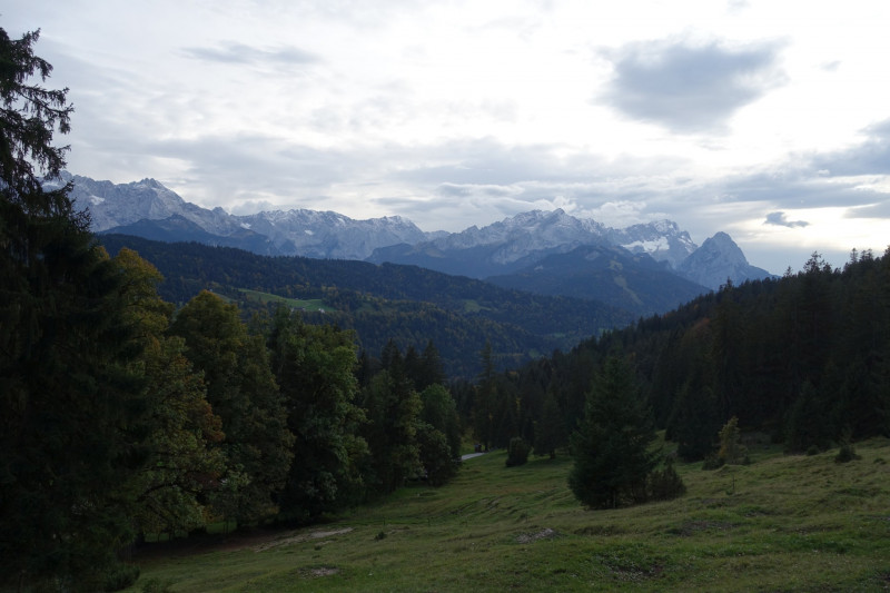 Gschwandtnerbauer - Rotenkopf - Riedberg - Esterberg-Alm - Gschwandtnerbauer