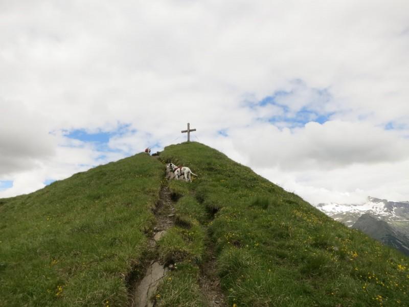 Himmelbauer - Beschellnighütte - Lassacher Höhe - Lonzaköpfl - Häusleralm - Mallnitz