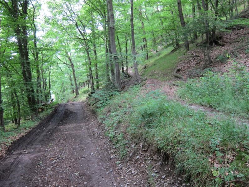 Traumpfad Höhlen- und Schluchtensteig Kell (ab Bergwege)