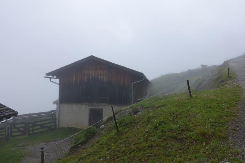 Kreuzjoch Mittelstation - Galtalm - Kaserstattalm - Starkenburger Hütte