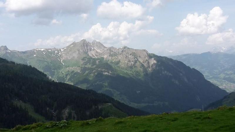 Tappenkarseehütte - Tappenkarsee Alm - Draugsteintörl - Draugsteinalmen - Halmoosalm