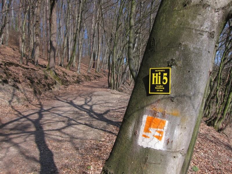 Traumpfad Waldschluchtenweg