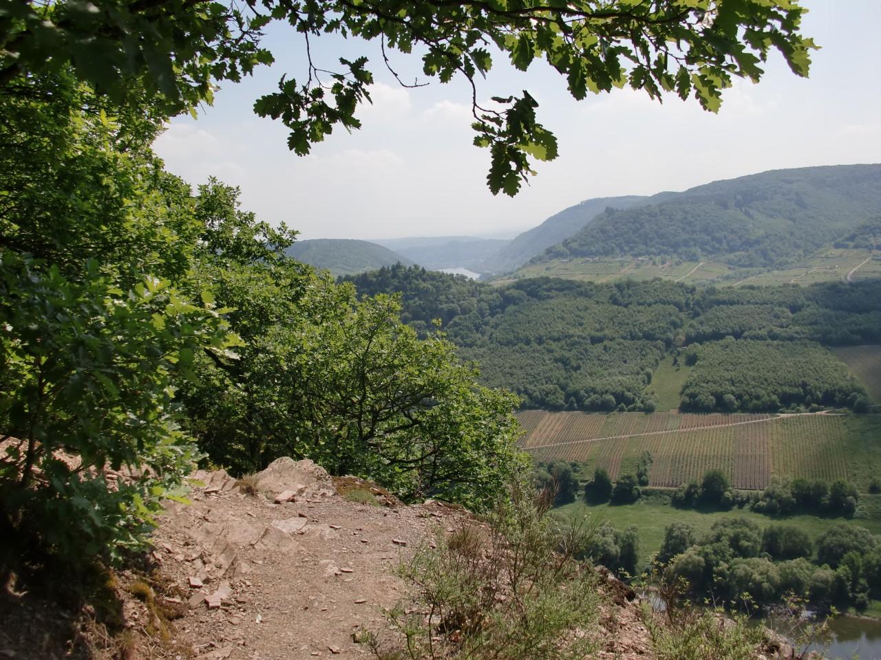Klettersteig Mosel : Calmont klettersteig und höhenweg wandern