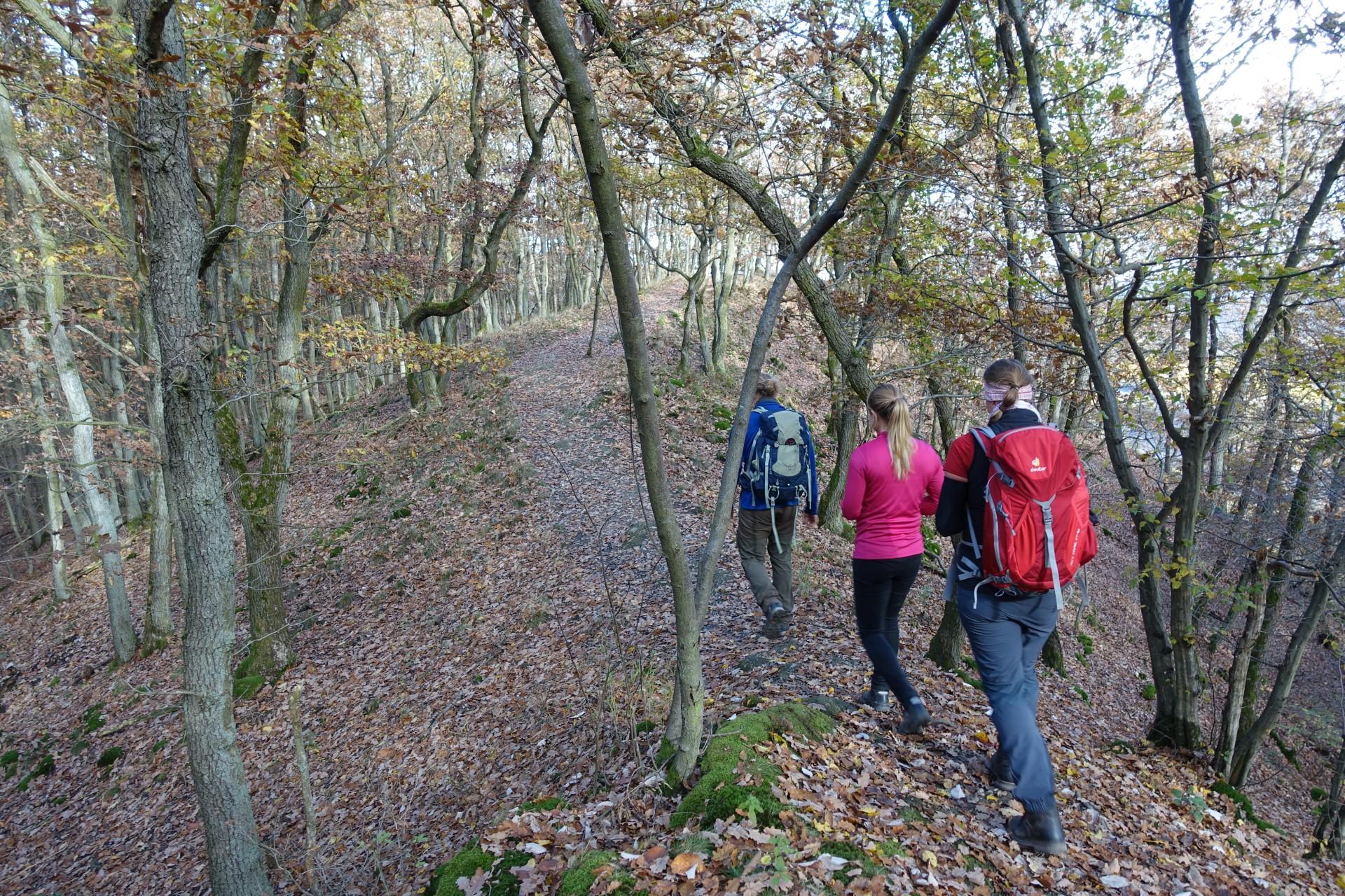 Klettersteig Rheinsteig Boppard : Mittelrheinklettersteig trailrunning hunsrück